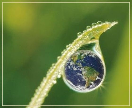 …a teremtett világ védelméről